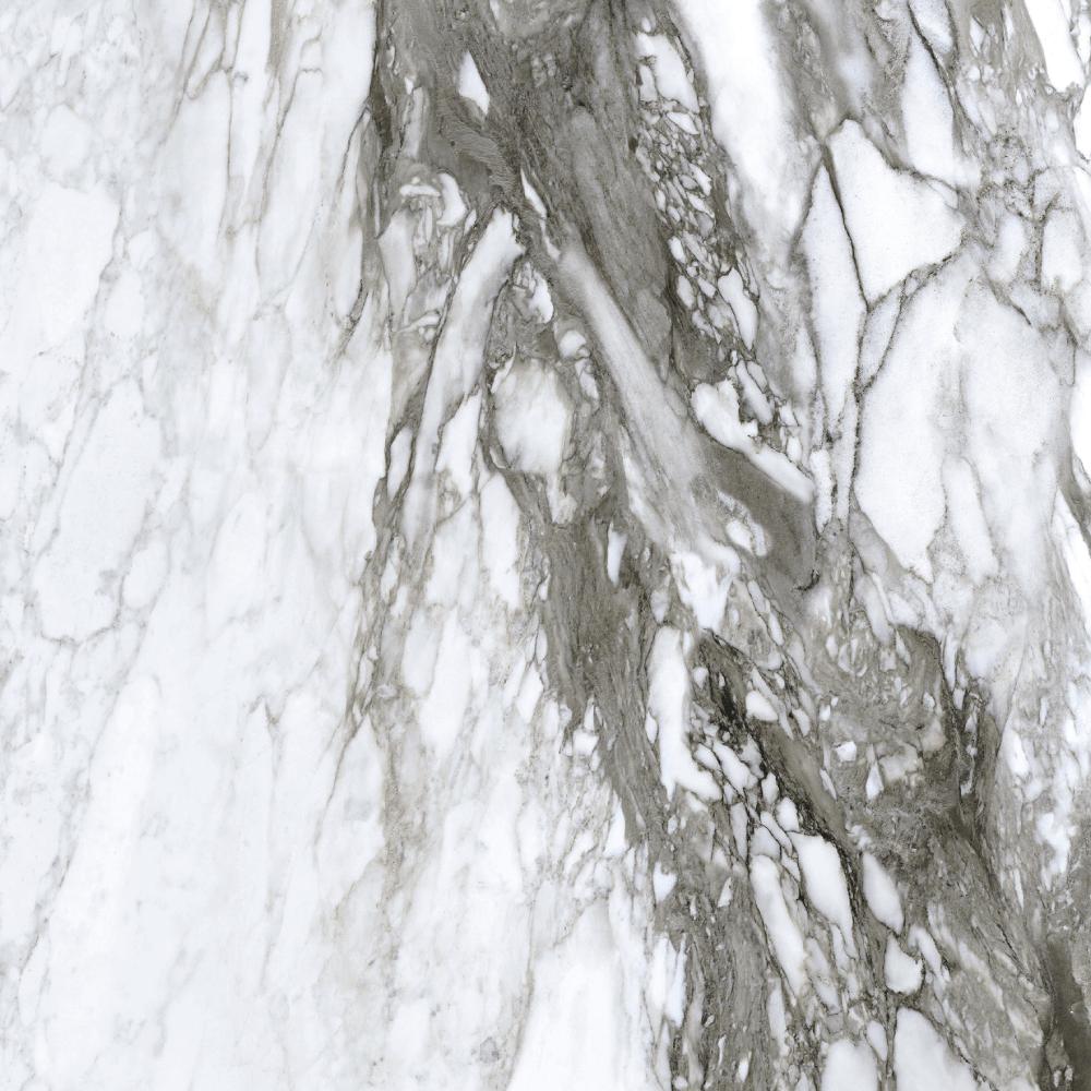 """Picture of Roberto Cavalli Lush 24""""x24"""" Calacatta Renoir Lux.Rett"""